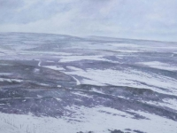 27/ to the coast framed size 126 x 70 cm sold