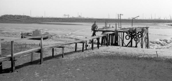 jetty greatham creek